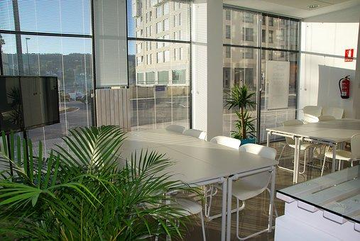 Office Design Tips to Future-Proof Office Space